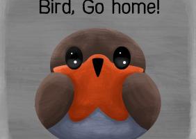 Bird, Go home!