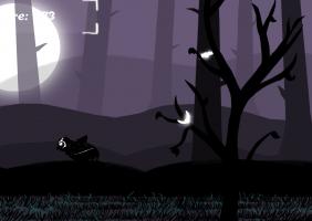 Owl Tales