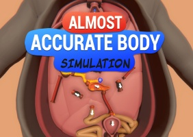 Almost Accurate Body Simulation (AABS)
