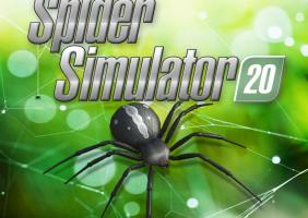 Spider Simulator 2020