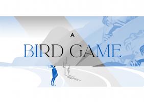 A Bird Game