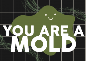You Are A Mold