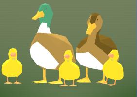 DuckTrails