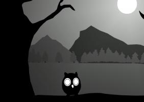 Ibis y la sombra del bosque