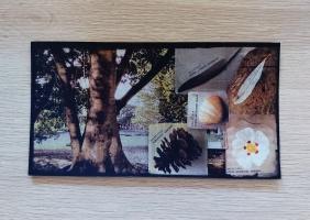 Postcard Memento
