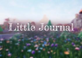 Little journal