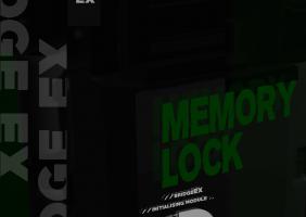 Memory Lock