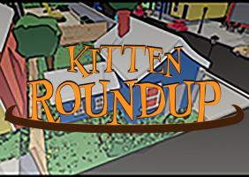 Kitten Roundup