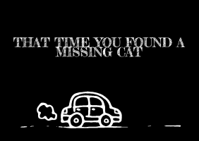 That Time You Found A Missing Cat