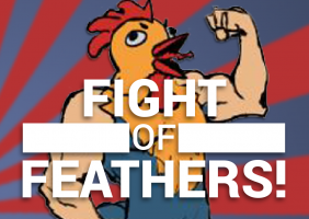 Fight of Feathers!