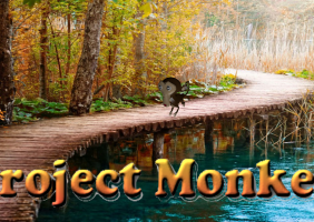 Project Monkey