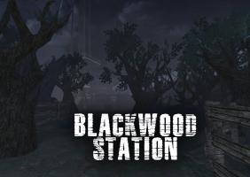 Blackwood Station